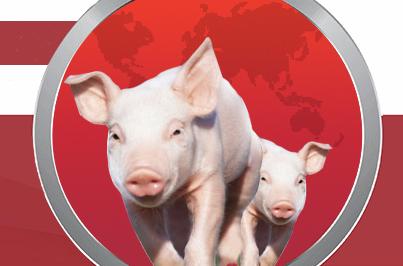 2019第八届李曼中国养猪大会暨2019世界猪业博览会